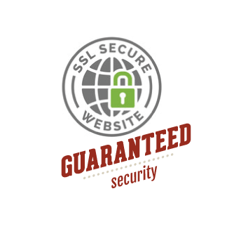 SSL security protocol